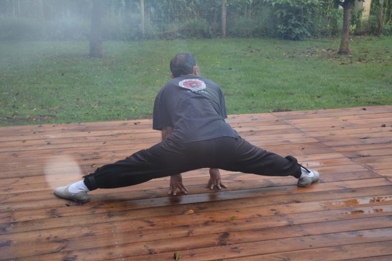 Anibal maitre de kung fu s echauffe